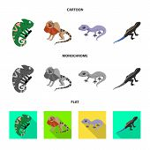 Vector Illustration Of Tail And Fauna Sign. Collection Of Tail And Environment Stock Symbol For Web. poster