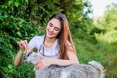 Woman And Small Goat Green Grass. Farm And Farming Concept. Village Animals. Girl Play Cute Goat. Fe poster