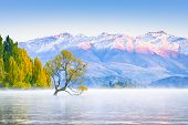 Scenic Peaceful Of Lake Wanaka In The Morning, One Of The Place Of Tourist Attraction In New Zealand poster