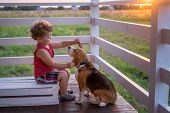 Cute Boy And Dog Beagle Sitting Hugging On The Veranda Of The House On A Summer Evening Against The  poster