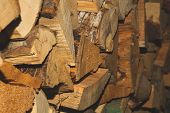 Stacks Of Firewood. Preparation Of Firewood For The Winter. Firewood Pile poster