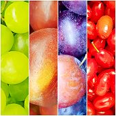 Green Grapes, Nectarine, Plum Collage Natural Nutrition Collage poster