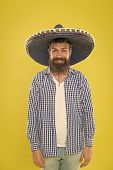 A Crazy Hat For Crazy Hat Day. Mexican Man Wearing Sombrero. Bearded Man In Mexican Hat. Hipster In  poster
