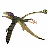 Peteinosaurus Reptile Tail 3d Illustration - Peteinosaurus Was A Carnivorous Flying Pterosaur That L poster