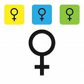 Black Female Gender Symbol Icon Isolated On White Background. Venus Symbol. The Symbol For A Female  poster