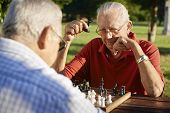 Active Retired People, Two Senior Men Playing Chess At Park