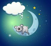 foto of koala  - Illustration of a koala bear above the moon - JPG