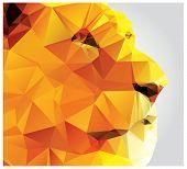 pic of lions-head  - Geometric polygon lion head - JPG