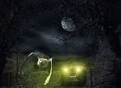 image of scary haunted  - Dark and scary Haunted Mansion with owl in flight at full moon - JPG