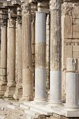 stock photo of ionic  - Ionic columns at Hadrians library in Athens - JPG