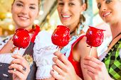 stock photo of national costume  - Friends visiting together Bavarian fair in national costume eating candy apple - JPG