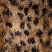 picture of ocelot  - Fur close up as background - JPG