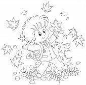 picture of throw up  - Joyful schoolboy runs and throws up autumnal leaves - JPG