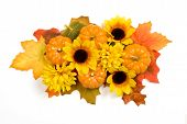 foto of centerpiece  - Horizontal shot of an autumn centerpiece with pumpkins and sunflowers - JPG