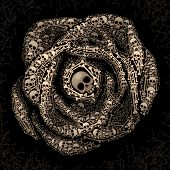 picture of skull bones  - Rose consist of skulls and bones on dark background - JPG