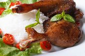 pic of roast duck  - roasted duck leg with rice on lettuce leaves on a white plate macro horizontal - JPG