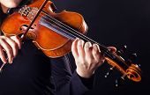 stock photo of string instrument  - Playing the violin - JPG