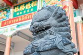 pic of guardian  - Chinese lion statue the guardian of the gate - JPG