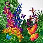image of tropical birds  - Floral design background - JPG