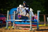 picture of horse-riders  - A rider on a jumping horse participatig in competition