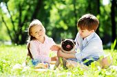 stock photo of dog park  - Adorable boy and girl in summer park with their dog - JPG