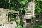 image of house woods  - Overgrown abandoned stone mansion in the woods with exposed chimney and fireplace - JPG