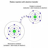 picture of reaction  - Model of redox reaction with electron transfer - JPG