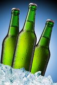 Постер, плакат: бутылка холодного пива с капельками воды на поверхности