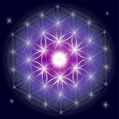 Sacred Geometry Illustration: Flower Of Life, Also Known As Seed Of Life Or The Pattern Of Creation. poster
