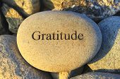 stock photo of gratitude  - Positive reinforcement word gratitude engraving on a rock - JPG
