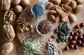Nuts And Seeds - Walnuts, Almonds, Flax Seeds, Hazelnuts, Hemp, Pumpkin And Sunflower Seeds. Top Vie poster