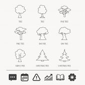 Pine Tree, Maple And Oak Icons. Christmas Trees Linear Signs. Forest Trees Flat Line Icons. Educatio poster