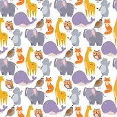 Vector Whale Zoo Animals Dolphin Illustration Seamless Pattern North Endangered Surface Deep Drawing poster