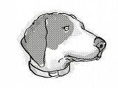 Retro Cartoon Style Drawing Of Head Of A Bluetick Coonhound , A Domestic Dog Or Canine Breed On Isol poster