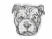 Retro Cartoon Style Drawing Of Head Of A Chinese Shar-pei, A Domestic Dog Or Canine Breed On Isolate poster