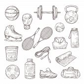 Sketch Sports Equipment. Ball, Dumbbell And Tennis Rackets, Boxing Glove And Jump Rope, Sports Nutri poster