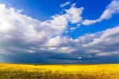 The Horn of Africa. Travel to tropical Africa. Gorgeous clouds pile up over a grassy savannah. The c poster