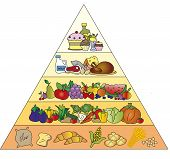 image of food pyramid  - a illustration of food pyramid in white background - JPG