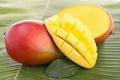 stock photo of mango  - fresh mango - JPG