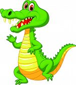 image of gator  - Vector illustration of Cute crocodile cartoon isolated on white background - JPG