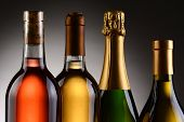 Closeup of four wine bottles backlit with a light to dark gray background. A Blush, Chardonnay, Sauv