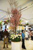 The Secret Garden theme flower decoration with Cherry tree during famous Macy s Annual Flower Show