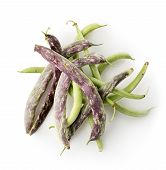 pic of bean-pod  - Bean pods isolated on a white background - JPG