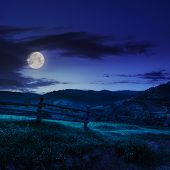 picture of haystacks  - wooden fence in the grass on the hillside near the village at night in moon light - JPG