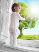 image of environmentally friendly  - Little boy looking at rural garden from a window - JPG