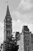Parliament Hill building in black and white in Ottawa, Canada