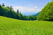stock photo of pieniny  - Sunny landscape - JPG