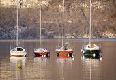 stock photo of annecy  - Four colored sailboats on Annecy lake Savoy France - JPG