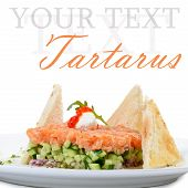 image of tartar  - The tartar with salmon and cucumber macro - JPG
