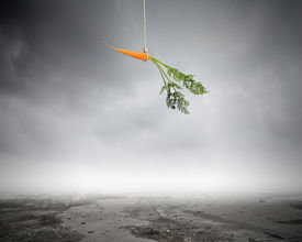 stock photo of dangling a carrot  - Conceptual image of carrot dangling on rope - JPG
